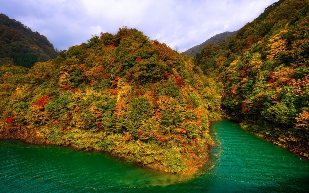 Осень в лесу фото на рабочий стол - самые лучшие (13)