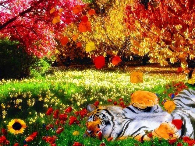 Осень картинки на рабочий стол 3 д001