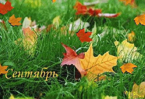 Осень картинки на рабочий стол 3 д004