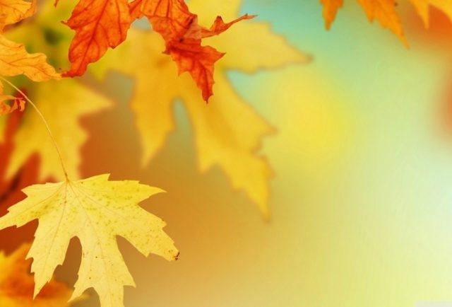 Осень картинки на рабочий стол 3 д022