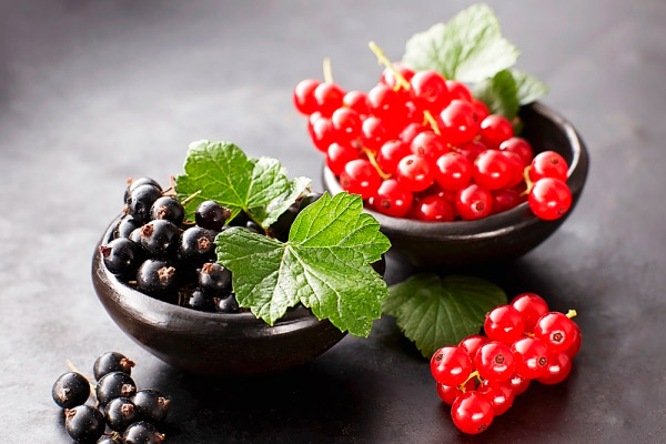 Особенности выращивания смородины 2