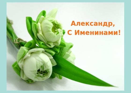 Открытки и картинки с именинами Александр - подборка (20)