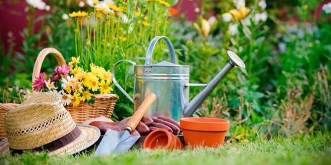 Открытки поздравления с днем садовода (1)