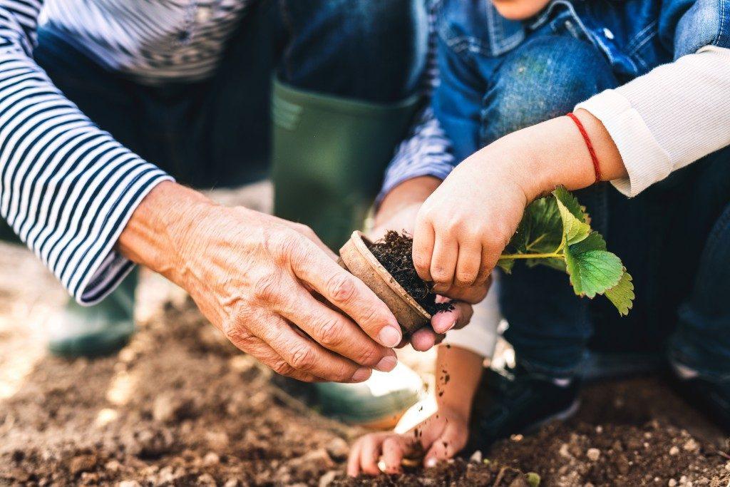 Открытки поздравления с днем садовода (13)