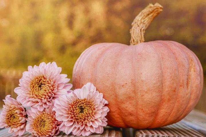 Открытки поздравления с днем садовода (7)