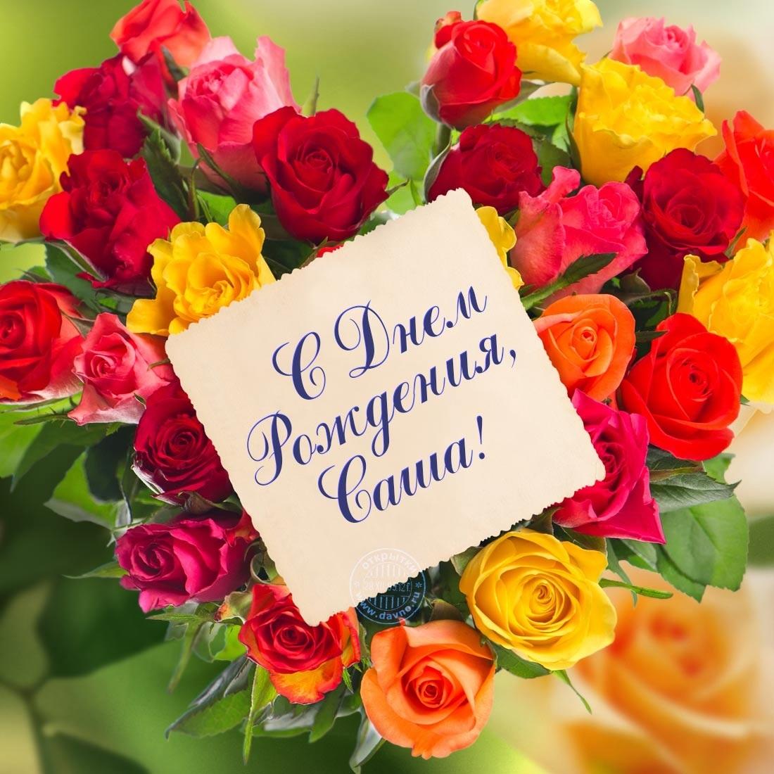 Открытки с днем рождения Сашенька девочка003