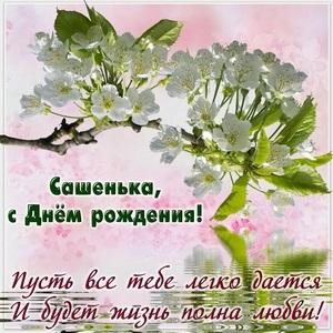 Открытки с днем рождения Сашенька девочка022