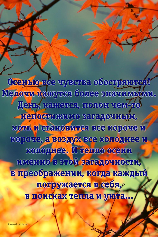 Красивая картинка осень с надписью