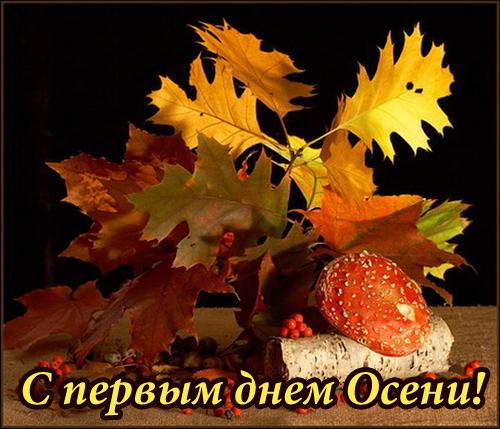 Открытки с надписями красивая осень в высоком качестве (14)