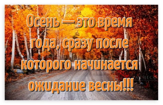 Открытки с надписями красивая осень в высоком качестве (17)