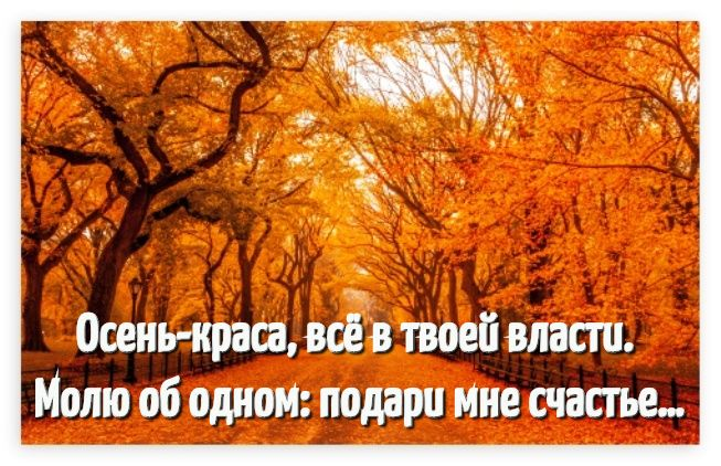Открытки с надписями красивая осень в высоком качестве (18)