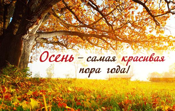 Открытки с надписями красивая осень в высоком качестве (9)