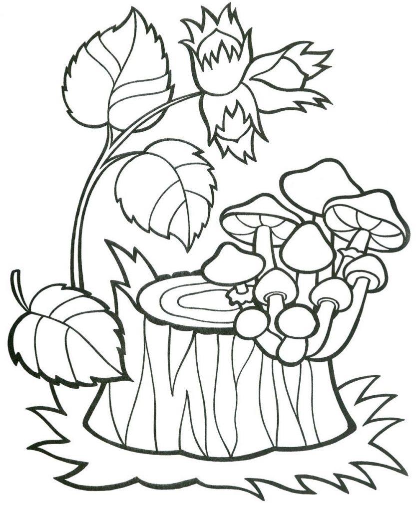 Пенек с грибами раскраска для детей001