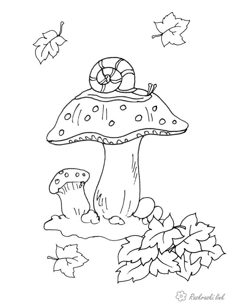 Пенек с грибами раскраска для детей006