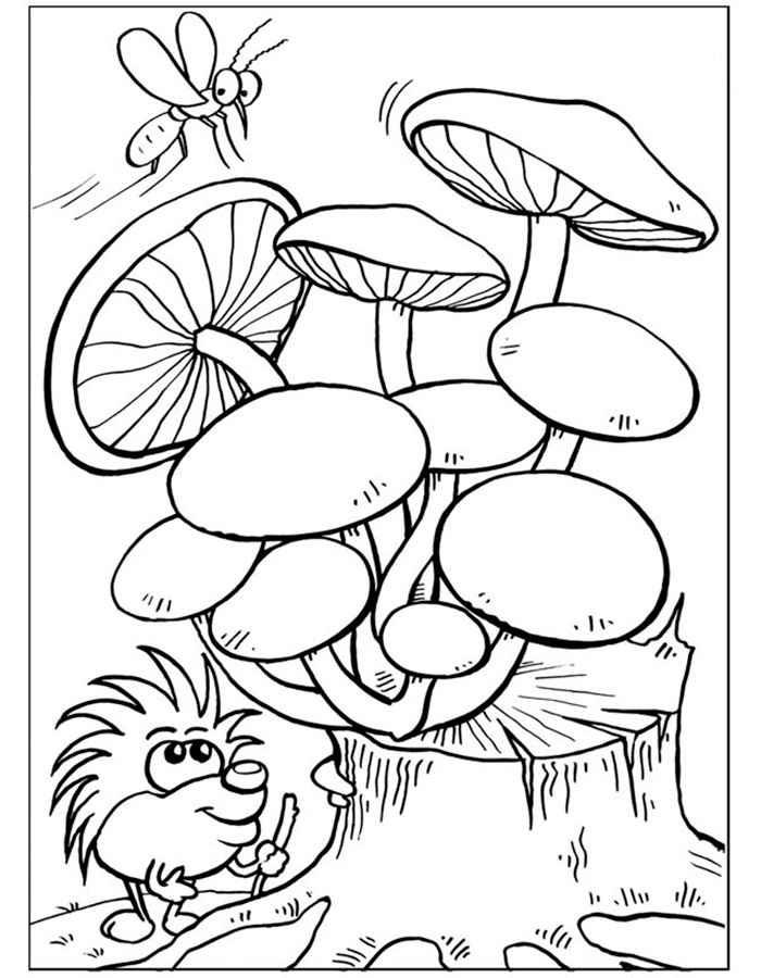 Картинки для раскрашивания грибы для детей