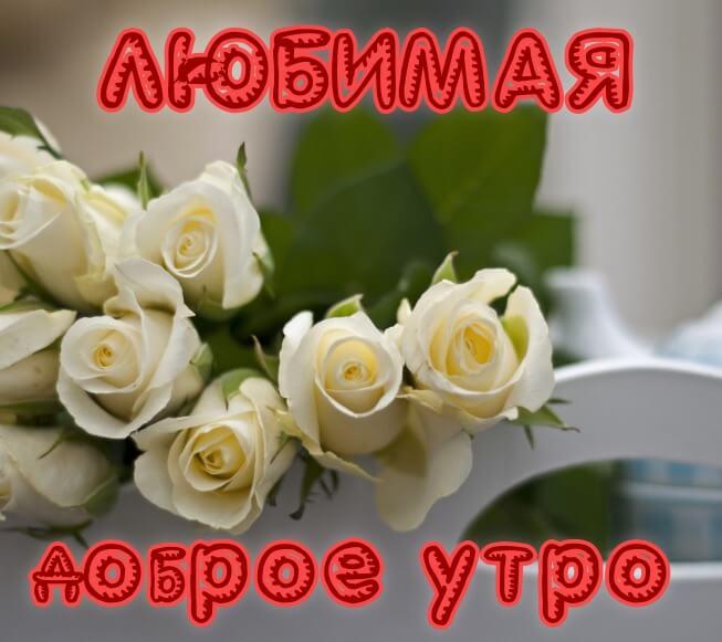 Пожелания с добрым утром в картинках любимой девушке (11)