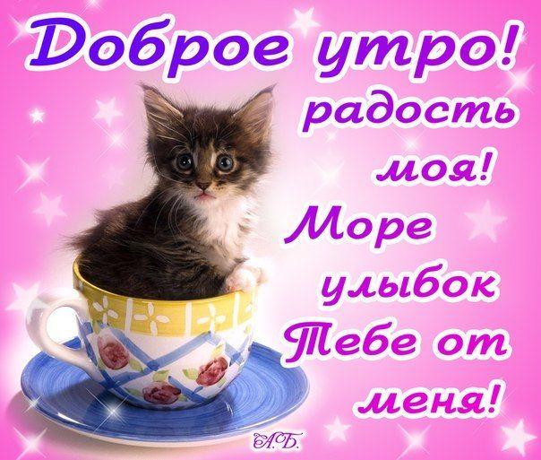 Пожелания с добрым утром в картинках любимой девушке (4)