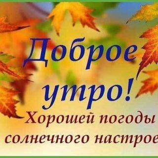 Прекрасного осеннего воскресенья   лучшие фото011