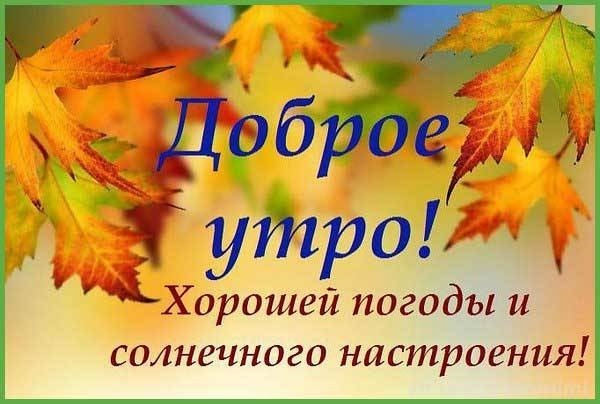 Прекрасного осеннего воскресенья - лучшие фото011