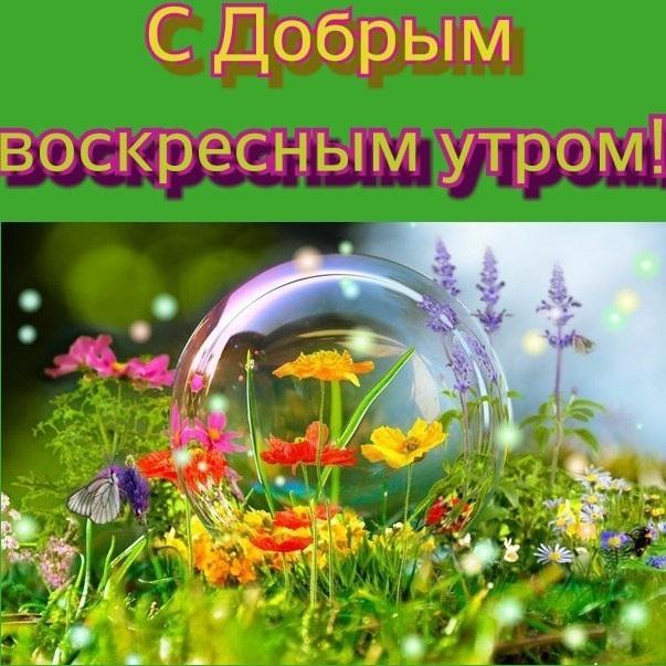 Прекрасного осеннего воскресенья - лучшие фото017