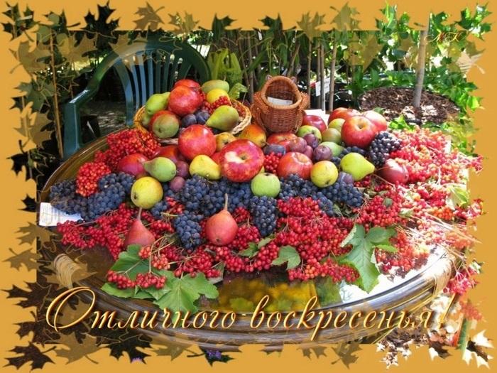 Прекрасного осеннего воскресенья - лучшие фото021