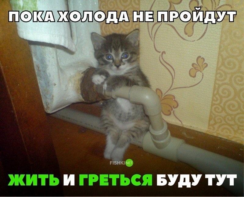 Прикольные картинки дружеская поддержка007
