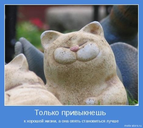 Прикольные картинки дружеская поддержка012