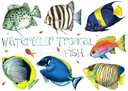 Прикольные картинки нарисованные рыбы019