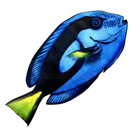 Прикольные картинки нарисованные рыбы025