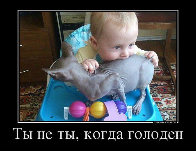 Прикольные картинки про детей с надписью (2)