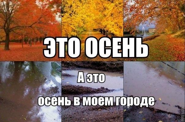 Прикольные картинки про осень смешные для друзей002