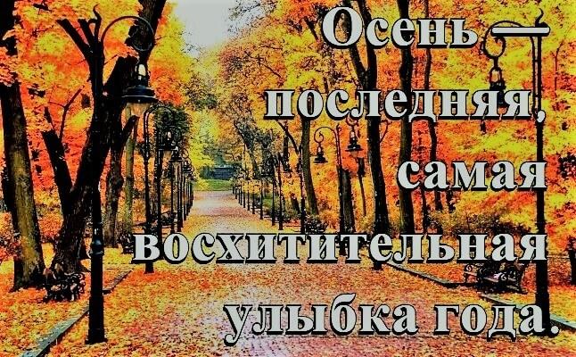 Прикольные картинки про осень смешные для друзей010