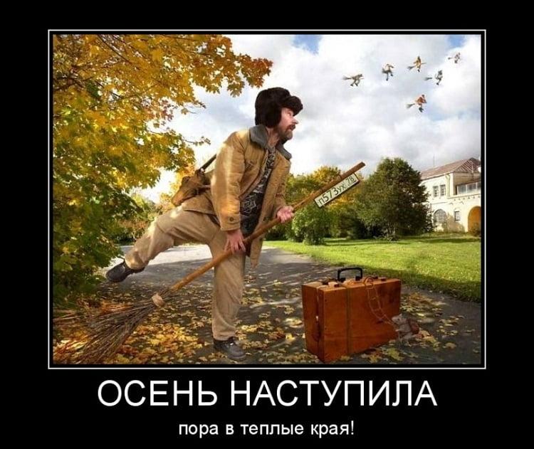 Прикольные картинки про осень смешные для друзей017
