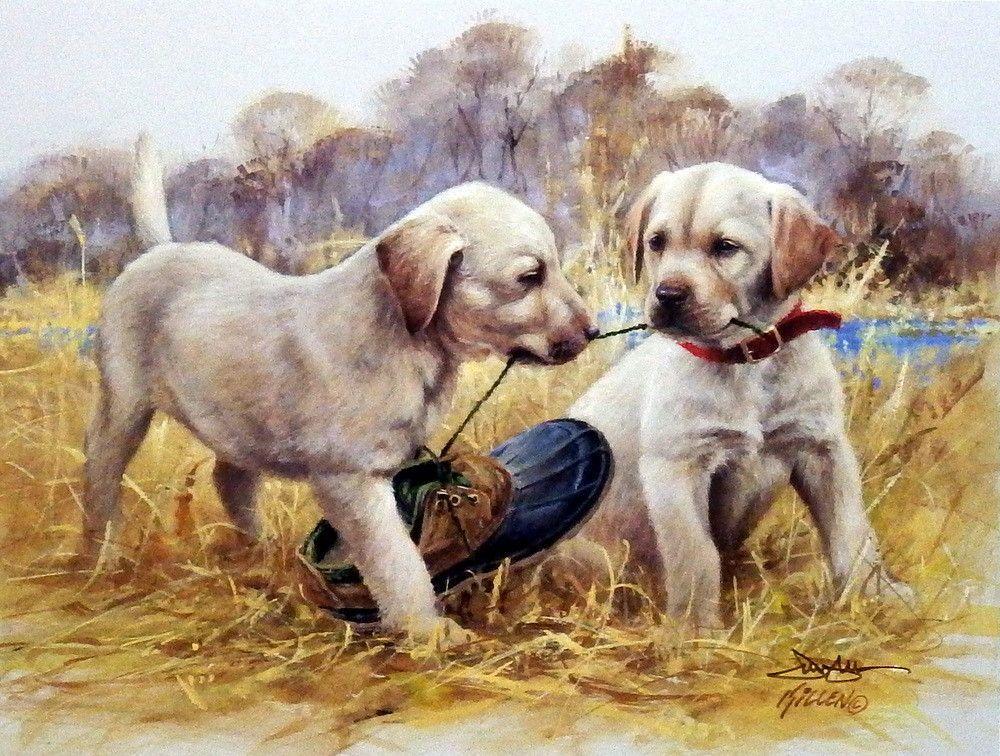 Прикольные картинки собак с надписью - 24 фото (24)