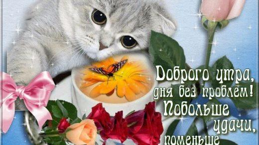 Прикольные картинки с добрым утром в понедельник   20 открыток (4)