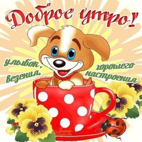Прикольные картинки с добрым утром и хорошего настроения015