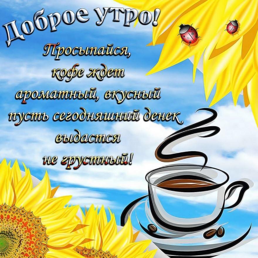 Прикольные картинки с добрым утром и хорошего настроения019
