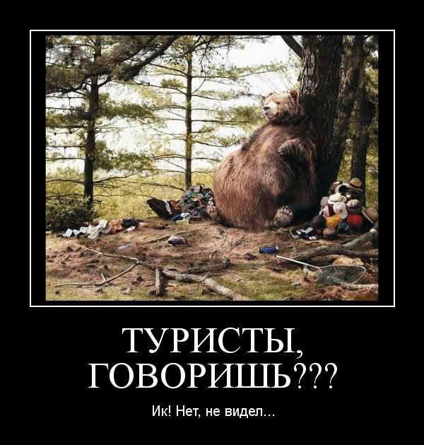 Прикольные картинки толстых людей и животных (5)