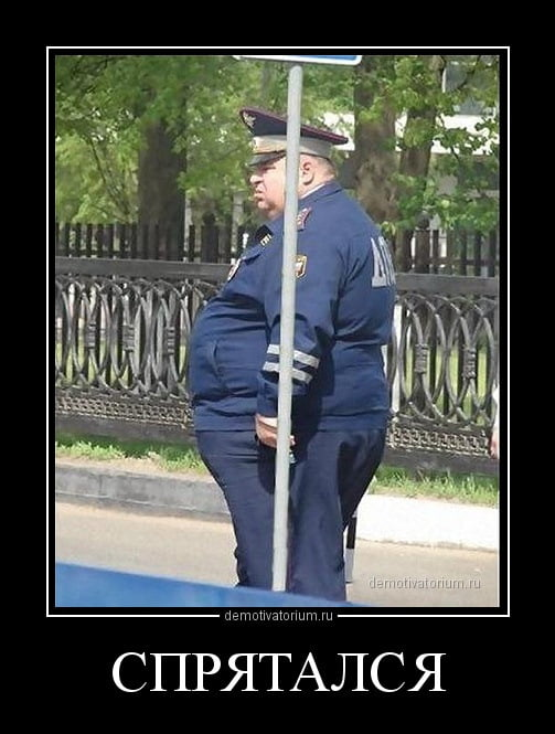 Прикольные картинки толстых людей и животных (7)