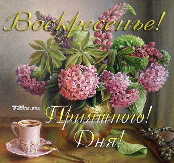 Приятного воскресенья картинки и открытки015