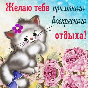 Приятного воскресенья картинки и открытки019