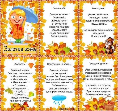 Растяжка золотая осень для детского сада008