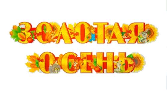 Растяжка золотая осень для детского сада010