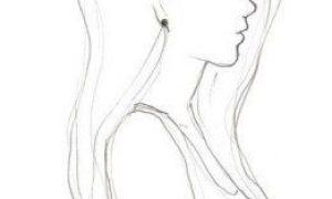 Рисунки карандашом для начинающих для девочек 11 лет012