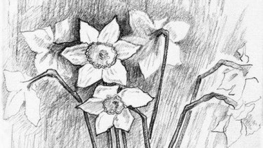 Рисунки на свободную тему 6 класс карандашом   идеи (2)