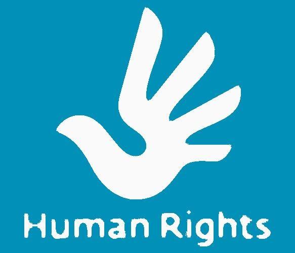 Рисунки на тему права человека в современном мире014