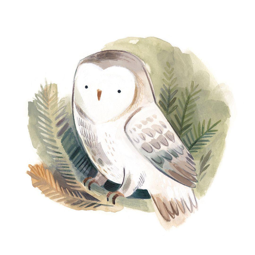 Рисунки совы красками смешные и веселые (10)