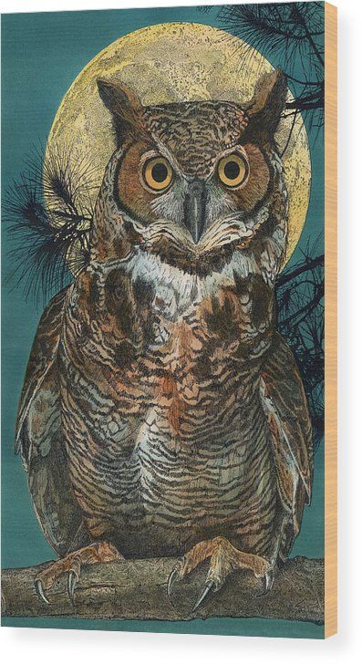 Рисунки совы красками смешные и веселые (13)