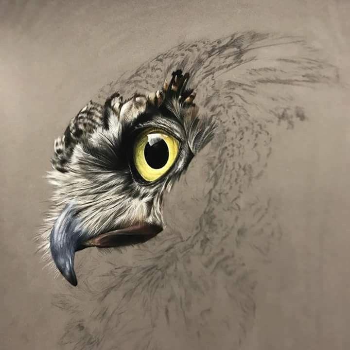 Рисунки совы красками смешные и веселые (25)