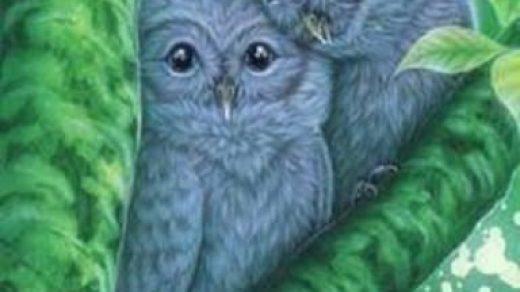 Рисунки совы красками смешные и веселые (26)